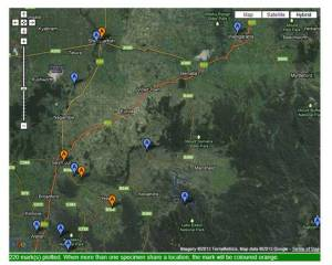 Confirmed records of Tiger Snakes in and around the Strathbogie Ranges prior to 2013. Map courtesy of Angus Martin & Museum of Vistoria.