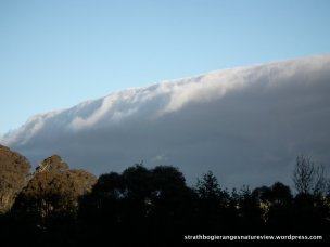 A moist air mass slicing through.
