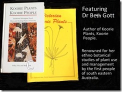 Beth Gott Books
