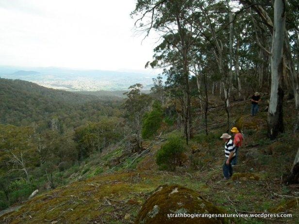 View towards Eildon from Golden Mount escarpment