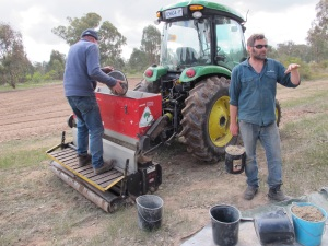 Rod spreading seed - high tech method