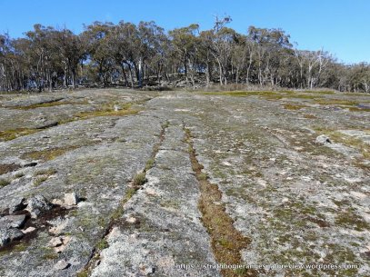 The large granite rock faces so characteristic of Mt Wombat.