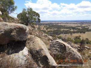 Granite boulders characterise Big Hill and provide excellent reptile habitat.