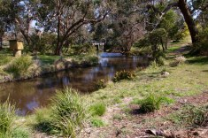 The trail entry point looking back at Spring Creek Bridge across the swimming hole in the Council Reserve