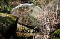 There are a number of beautiful rock forms toward the end of the trail