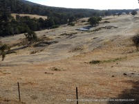 Patures are bare and dams failing - one of the hottest, driest summers on record.