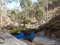 A substantial waterhole - one of only a few.