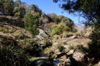 The water picks its way amongst boulders and rocks of various shapes and sizes