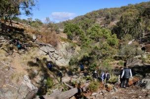 Rocky terrain begins
