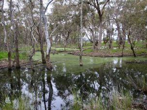 Far west is a mosaic of swampy black pools.