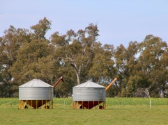 Rolled out for the harvest, these silos dot the cropping landscape.