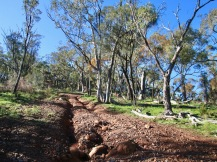 Motor bikes and 4WD have abused these walking tracks, making surfaces unstable. Take care with your footing.