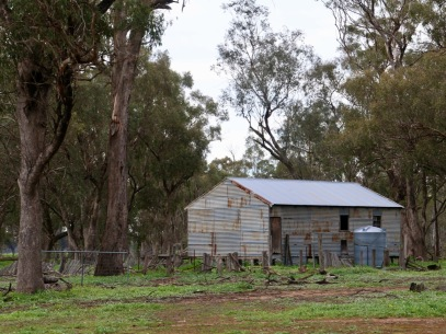 Old shearing shed with disused farming material and infrastructure - slip, trip and fall hazards