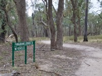 This sign clearly points you in the right direction. Red Box and Red Stringybark woodland marks your entry.