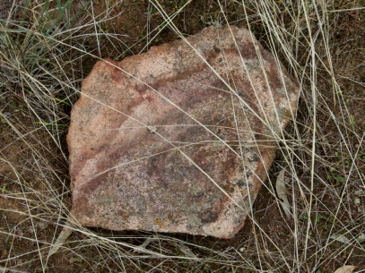 If you have been reading these blogs for a while you will know of my appreciation of a nature painted rock.
